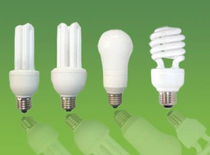 Compact Fluorescent Light Globes.