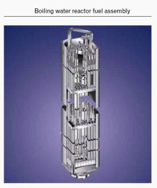 Boiling Water Reactor Fuel Rod Assembly. Click on image to open in a new and larger window.