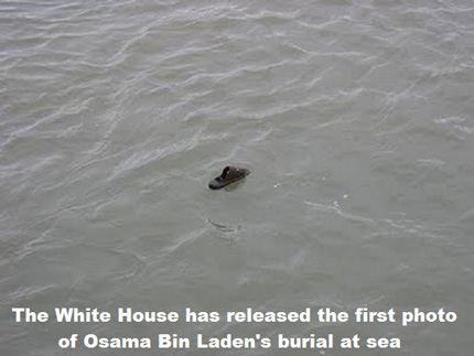 White House Released First Photo....