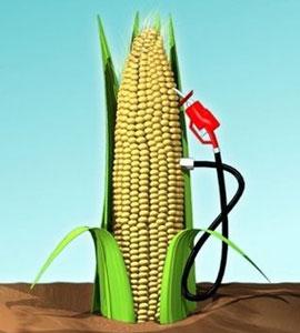 20101118_EthanolFuel