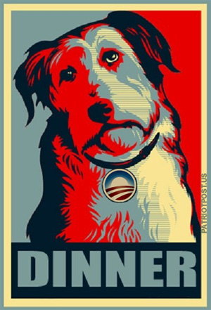 Dogs Against Rommey