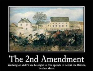 20130117_2nd_amendment_-_GUNS_++_large