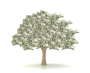 20130127_money_tree.jpeg