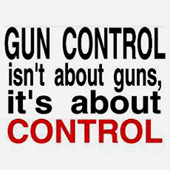 Gun Control Poster Mini
