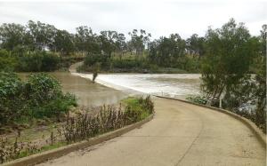Riverslea Crossing Fitzroy River