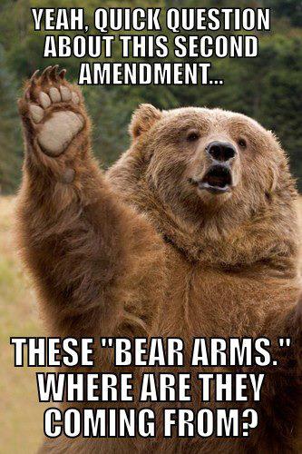 PP_2012-02-12-BearArms_humor-7