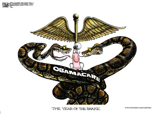 PP_2013-02-15-ObamasYearOfTheSnake_digest-cartoon-2