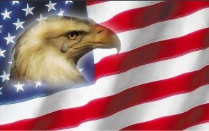 20121118_Crying_american_Eagle-Flag_LARGE