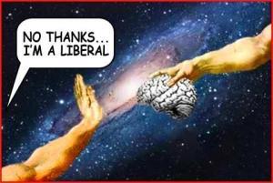 Liberals - Brainless