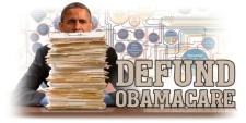 FSM_Defund_ObamaCARE_LARGE_20130731