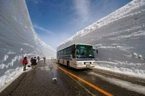 Ice Age Bus
