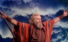 AA - Hollywood Moses