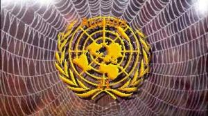 UN Spider's Web