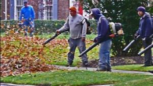 leafblowers