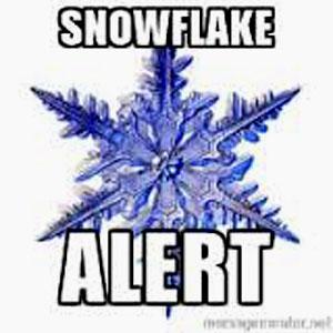 snowflakealert