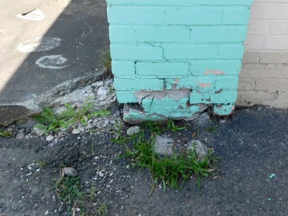 left side front foundation.JPG